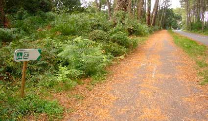 Señal de piste cyclable en la ruta de Contis Plage