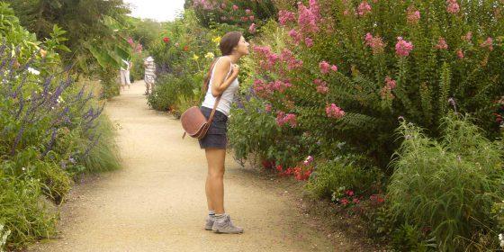 MIMIZAN. Route through the Botanical Garden on the lake of Aureilhan