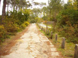 Vía semi-asfaltada que conduce a la piste cyclable hacia Lit et Mixe ya en la urbanización de Contis Sur