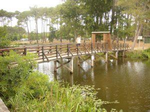 Mimizan. Promenade fleurie. Jardín Botánico