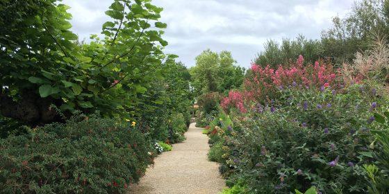 El Jardín Botánico de Mimizan