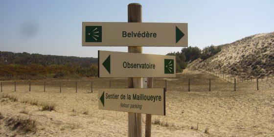 Paseo por la reserva biológica de La Mailloueyre (Mimizan)