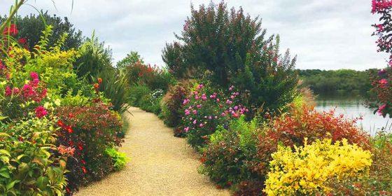 MIMIZAN. Jardín Botánico sobre el lago de Aureilhan